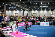 A participant of the World Dog Show 2017 competing in the ring for a good evaluation of the judges. Over 31,000 dogs from 73 nations will come together from 8-12 November 2017 in Leipzig for the biggest dog show in the world.