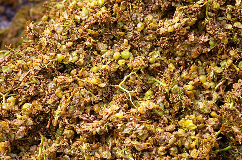 Grape skins and pips after pressing chardonnay clos des langres ardhuy nuits-st-georges cote de nuits burgundy france