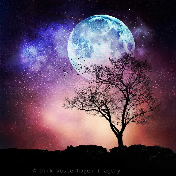 Dreamy nightscape with full moon and a lone tree<br /> S6 Prints & products: http://bit.ly/2bMKtzv