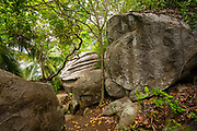 Moyenne Island is a small island (0.099 km2 or 0.038 sq mi) in the Ste Anne Marine National Park off the north coast of Mahé, Seychelles. Since the 1970s it has been a flora and fauna reserve