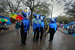 04 March 2014. New Orleans, Louisiana.<br /> Fat Tuesday. Mardi Gras Day.  In a tribute to the late artists George Rodrigue, revelers in Blue Dog costumes make their way along a cold and wet St Charles Avenue ahead of the parades as they walk downtown.<br /> Photo; Charlie Varley/varleypix.com