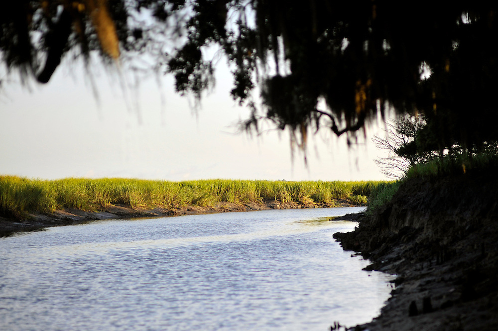 Framed by spanish moss dripping from live oak trees, the sun rises on a creek bank of spartina on Sapelo Island. Property owners are facing higher taxes, and fees from the county tax collector threatening an already fragile community of Hog Hammock. (Stephen Morton for The New York Times)