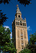 SPAIN, ANDALUSIA, SEVILLE the Giralda; Moorish, now belltower