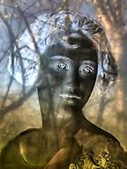 Glass Plate Portraits