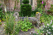 A stone bench covered with moss and lichen surrounded by plants on the terrace at Cothay Manor, Greenham, Wellington, Somerset, UK