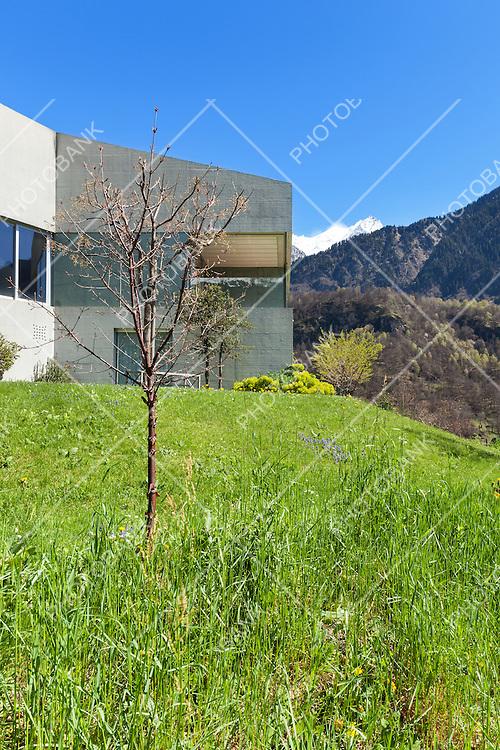 Architecture modern design, concrete house and garden, outdoors