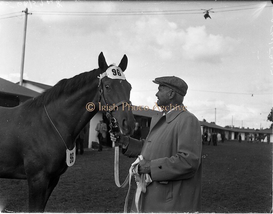 19/09/1960<br /> 09/19/1960<br /> 19 September 1960<br /> Goffs September Bloodstock Sales at Ballsbridge, Dublin.<br /> Mr. Neil McCarthy, California with the yearling filly by Alycidon which he bought ofr 6,200 guineas at the Ballsbridge sales.