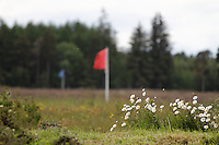 The Culloden, where the last battle on the British Islands took place in 1746. The red flags marks where the English force was lined up before the battle, and the blue flags marks the Scottish force. The Scots were defeated and slaughtered...
