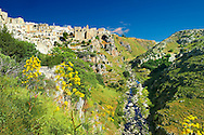 """The  """"la Gravina"""" ravine that runs around Matera, Southern Italy .<br /> <br /> Visit our ROMAN ART & HISTORIC SITES PHOTO COLLECTIONS for more photos to download or buy as wall art prints https://funkystock.photoshelter.com/gallery-collection/The-Romans-Art-Artefacts-Antiquities-Historic-Sites-Pictures-Images/C0000r2uLJJo9_s0<br /> .<br /> <br /> Visit our MEDIEVAL PHOTO COLLECTIONS for more   photos  to download or buy as prints https://funkystock.photoshelter.com/gallery-collection/Medieval-Middle-Ages-Historic-Places-Arcaeological-Sites-Pictures-Images-of/C0000B5ZA54_WD0s"""