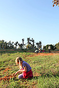 Outdoor activity. Children sowing seeds outside