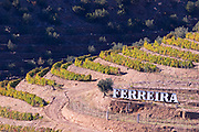 vineyards ferreira sign douro portugal
