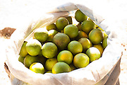 Divinopolis_MG, Brasil...Detalhe de um saco com laranjas utilizado no comercio informal na rodovia MG-50 em Divinopolis...Detail of bag with oranges used in the informal trade in the MG-50 in Divinopolis...Foto: LEO DRUMOND / NITRO