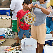 The fish market on the beach at Playa Principal, Zihuatanejo, Mexico. When the local fisherman return about dawn, they sell their catches at a beach fish market to early morning buyers. Being a traditional fishing village, the seafood in Zihuatanejo is superb.
