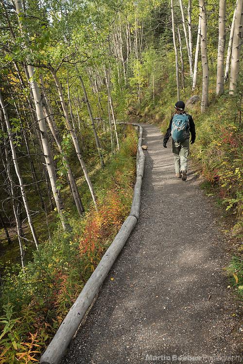 Hiker on McKinley Station Trail, Denali National Park, Alaska