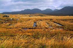 July 21, 2019 - Connemara, County Galway, Ireland, Harvesting Turf (Credit Image: © Peter Zoeller/Design Pics via ZUMA Wire)