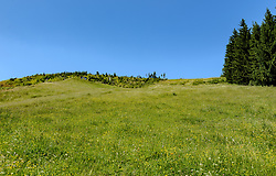 THEMENBILD - Der Blick auf den Super-G Starthang, aufgenommen am 26. Juni 2017, Kitzbühel, Österreich // The view of the Super-G starting slope at the Streif, Kitzbühel, Austria on 2017/06/26. EXPA Pictures © 2017, PhotoCredit: EXPA/ Stefan Adelsberger