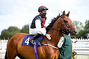 Storm Melody ridden by Kieran O'Neill and trained by Ali Stronge - Mandatory by-line: Robbie Stephenson/JMP - 18/07/2020 - HORSE RACING- Bath Racecourse - Bath, England - Bath Races 18/07/20