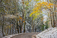 Seasons collide on as winter snow meets autumn on this country road in Randolph County, West Virginia.