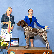 German Shorthaired Pointer Club of Wisconsin 07/02/2021