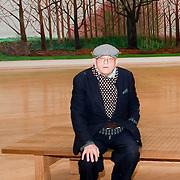 David Hockney Tate Britain