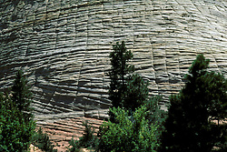 UT: Utah; Zion National Park, Checkerboard Mesa     .Photo Copyright: Lee Foster, lee@fostertravel.com, www.fostertravel.com, (510) 549-2202.Image: utzion208