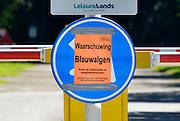 Nederland, Beek, 24-8-2016Wylerbergmeer heeft Blauwalg. Ondanks zwemverbod zijn er toch mensen in het waterFoto: Flip Franssen