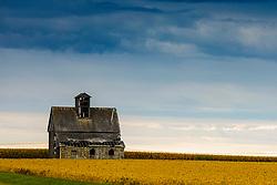 Barn, barn lot, farmstead or other farm building