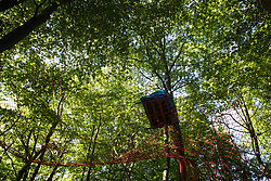 Wendover, UK. 17 July, 2020. A tree platform and net suspended from trees above Wendover Active Resistance Camp. Activist groups including Stop HS2 and HS2 Rebellion continue to oppose HS2, which is currently projected to cost £106bn and which will remain a net contributor to CO2 emissions during its projected 120-year lifespan, on environmental and economic grounds.