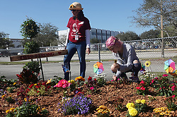 Victoria Gonzalez plants a daisy as teacher Roni Reoven looks on at the memorial garden outside Marjory Stoneman Douglas High School in Parkland, Fla. on Wednesday, February 14, 2019, on the anniversary of the shooting at the school. Gonzalez was the girlfriend of Joaquin Oliver and the garden was her project. Photo by Joe Cavaretta/Sun Sentinel/TNS/ABACAPRESS.COM