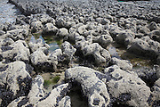 Carboniferous limestone shaped by the sea, Fanore beach, near Ballyvaughan, County Clare, Ireland