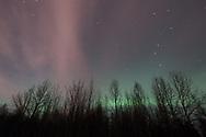 Ursa Major, the green glow of the Aurora Borealis, and clouds catching Aurora light adorn an early morning at Chena Lakes, North Pole, Alaska.