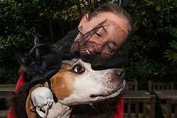 Hampstead Heath, London, October 26th 2014. Dogs rescue and re-homing charity All Dogs Matter hold their annual Halloween fancy dress dog walk on Hampstead heath. PICTURED: Colleen and her English Pointer Dottie get ready to walk.