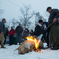 As part of the cleaning process a worker burns off hair from a pig killed during a Pig killing in Hungary and meat processing event in Pomaz (about 20 kilometres North of capital city Budapest), Hungary on January 28, 2017. ATTILA VOLGYI
