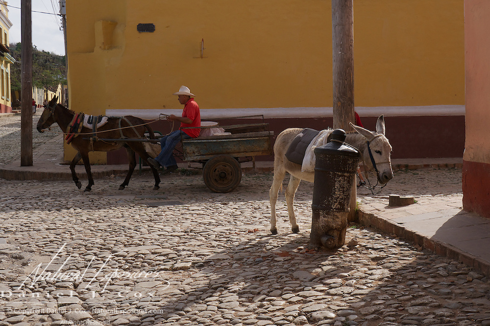 A horse and cart pass by a patiently waiting donkey on the streets of Trinidad, Cuba.