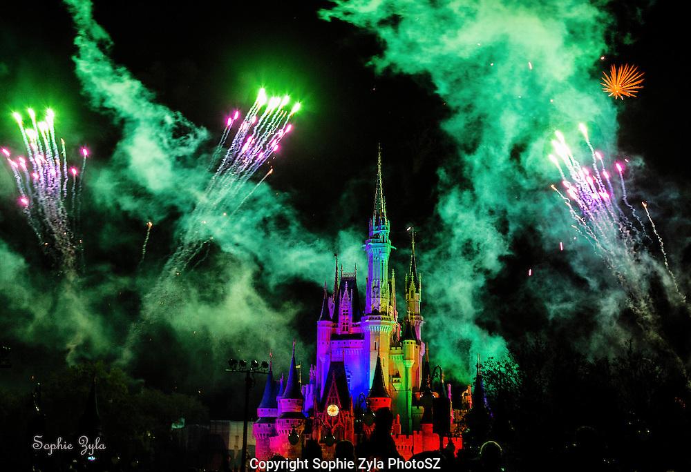 Fireworks and Lights at Cinderella Castle