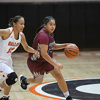 Shiprock's Lisa Begay (22) dribbles down the court guarded by Gallup's Hanna Toledo (13) in their matchup Friday night at Gallup High School.