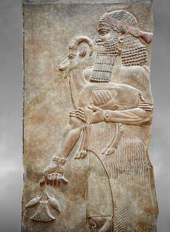 Stone relief sculptured panel of a man holding an Ibex and a poppy flower. Facade L. Inv AO 19872 from Dur Sharrukin the palace of Assyrian king Sargon II at Khorsabad, 713-706 BC.  Louvre Museum Room 4 , Paris