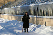 St Petersburg, Russia, 10/02/2004..Founded in 1714 by Peter the Great, the Komarov Institute is one of the largest botanical collections in the world. Woman walking past greenhouses in the botanical gardens in minus 15C.