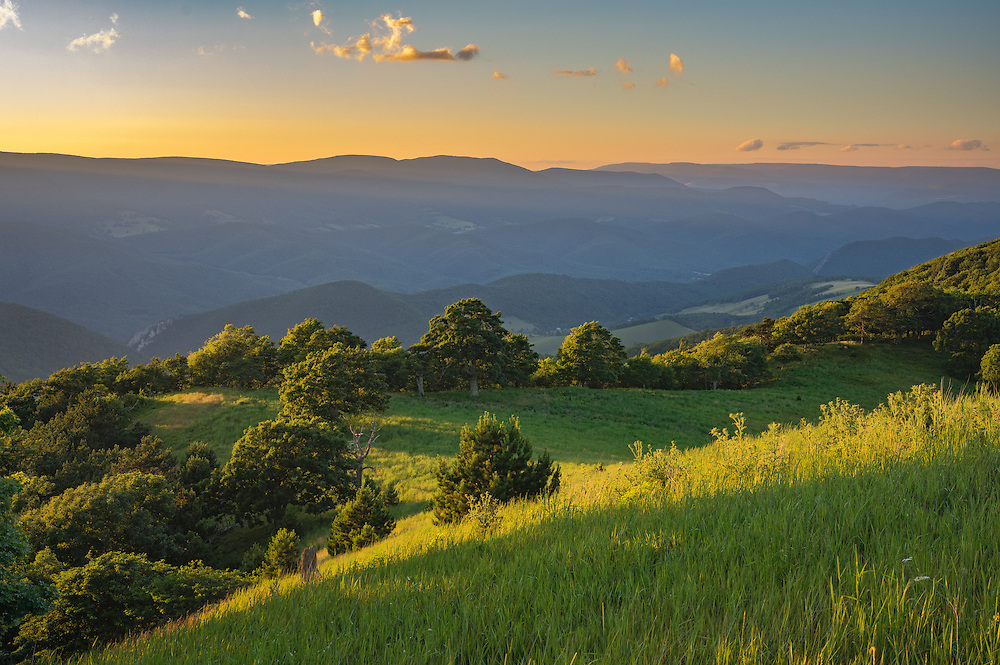 The sun sets across the North Fork Valley and paints the high meadow of Nelson Sods in luxurious greens.