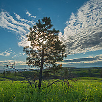 Clouds soar over high prairies in Phillips County, Montana.