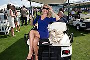 CHRISTIE BRINKLEY, Cartier International Polo. Smiths Lawn. Windsor. 24 July 2011. <br /> <br />  , -DO NOT ARCHIVE-© Copyright Photograph by Dafydd Jones. 248 Clapham Rd. London SW9 0PZ. Tel 0207 820 0771. www.dafjones.com.