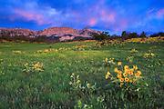 Sunrise on the Sun River Wildlife Management Area, Montana.