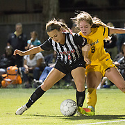 11/3/16 6:39:37 PM- Big West Women's Soccer Semifinal match of Cal State Long Beach against Cal State Northridge  at Cal State Long Beach in Long Beach, CA<br /> <br /> Photo by Chris M. Leung/Sports Shooter Academy