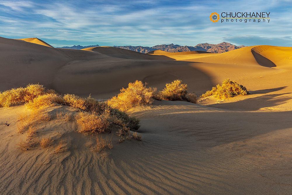 Mesquite Sand Dunes in Death Valley National Park, California, USA