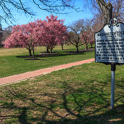 Chestertown, MD, USA - March 30, 2013:A historic marker of Washington College on the campus in Chestertown, MD
