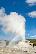 Castle geyser erupting with rainbow in Yellowstone