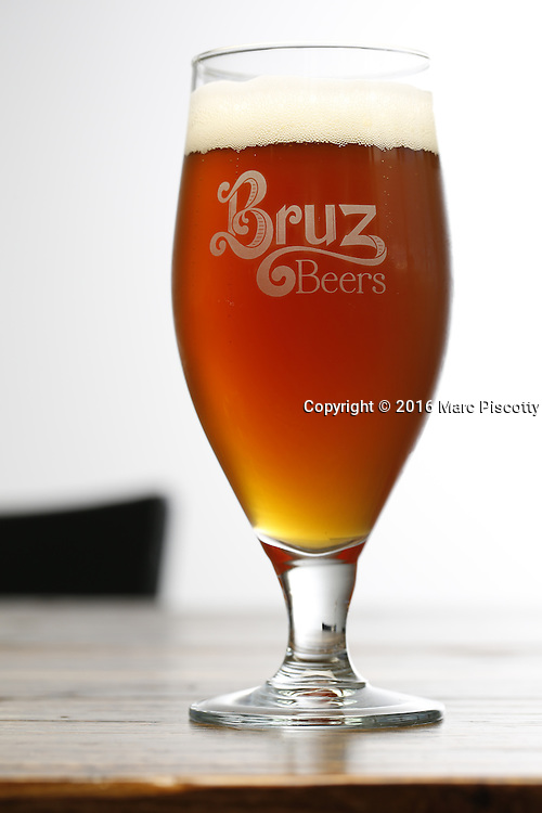 SHOT 7/22/16 2:30:18 PM - Bruz Beers co-founders Charlie Gottenkieny and Ryan Evans inside the new brewery near 67th Avenue and Pecos in Denver, Co. Bruz Beers is Denver's artisanal Belgian-style brewery, featuring a full line of traditional and Belgian-inspired brews, hand-crafted in small batches. Includes images of Evan's dog 'Cooper' as well who serves as the brewery dog. (Photo by Marc Piscotty / © 2016)