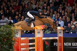 Hees Manon, (NED), Flying Dream<br /> Springen Klasse M<br /> KWPN Hengstenkeuring - 's Hertogenbosch 2016<br /> © Hippo Foto - Dirk Caremans<br /> 04/02/16