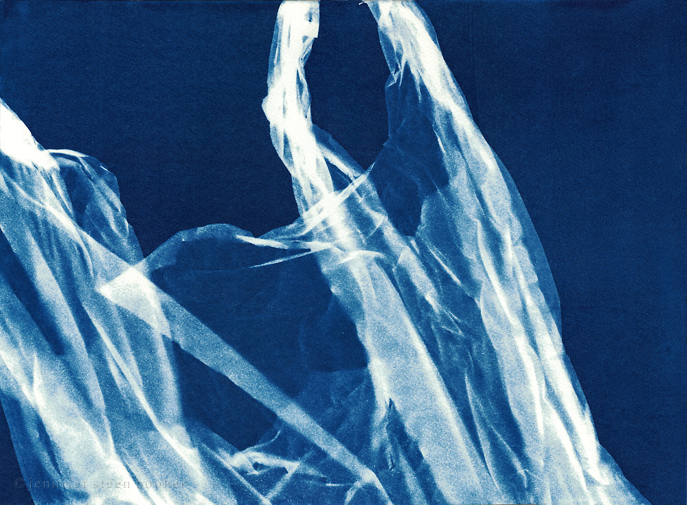Scanned image of an original cyanotype.
