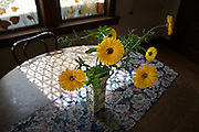 Yellow flowers stand in a vase on a table besides a window in a home in Seattle, Washington.
